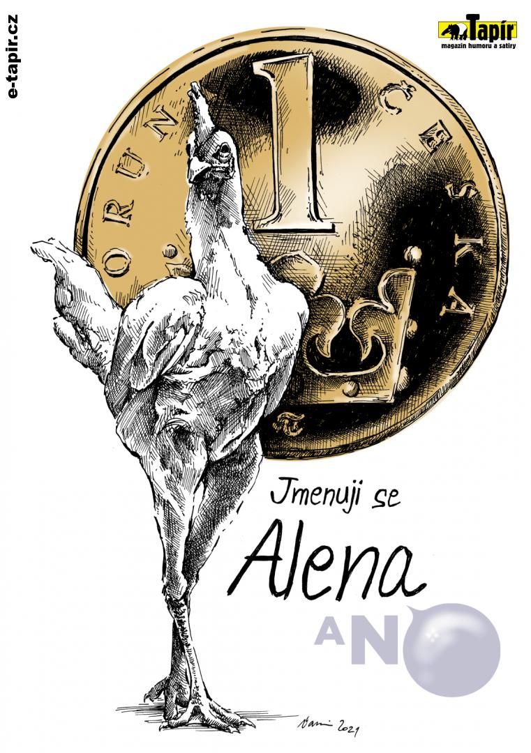Slepice Alena kolor-7bdf2689