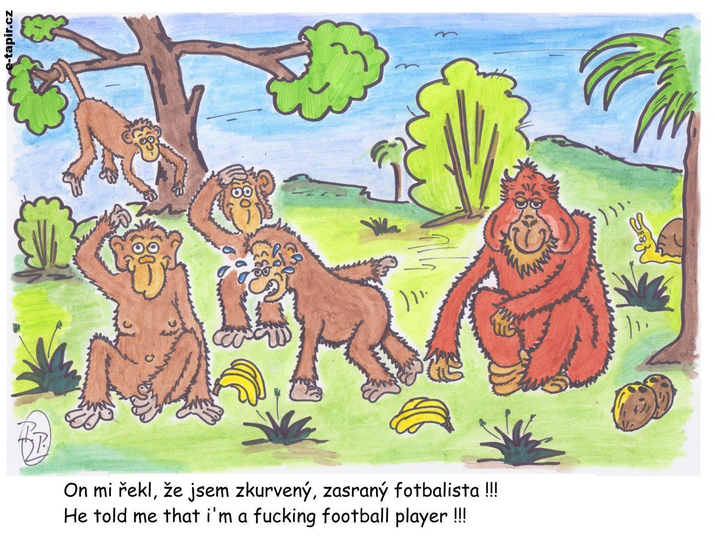 298 - Opičky-3ed4664a