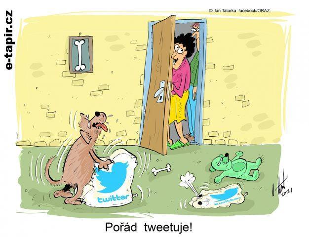 tweetuje_WEB-9a3f5d16