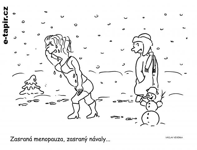 Menopauza-29b3ded4
